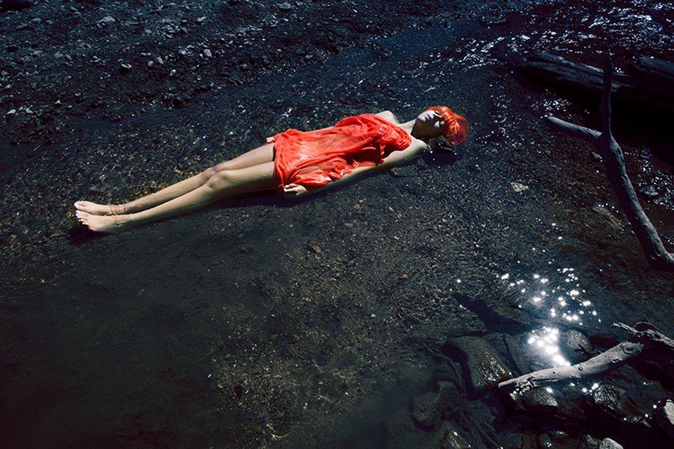 Shae DeTar-Photography-Painting-154koi