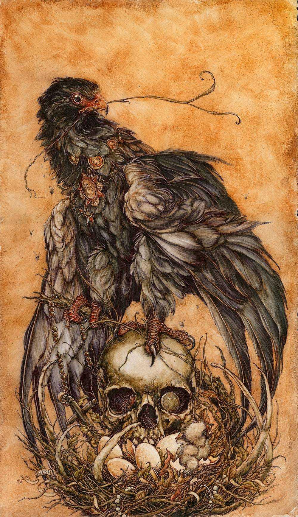 Jeremy hush - Illustrations 2568