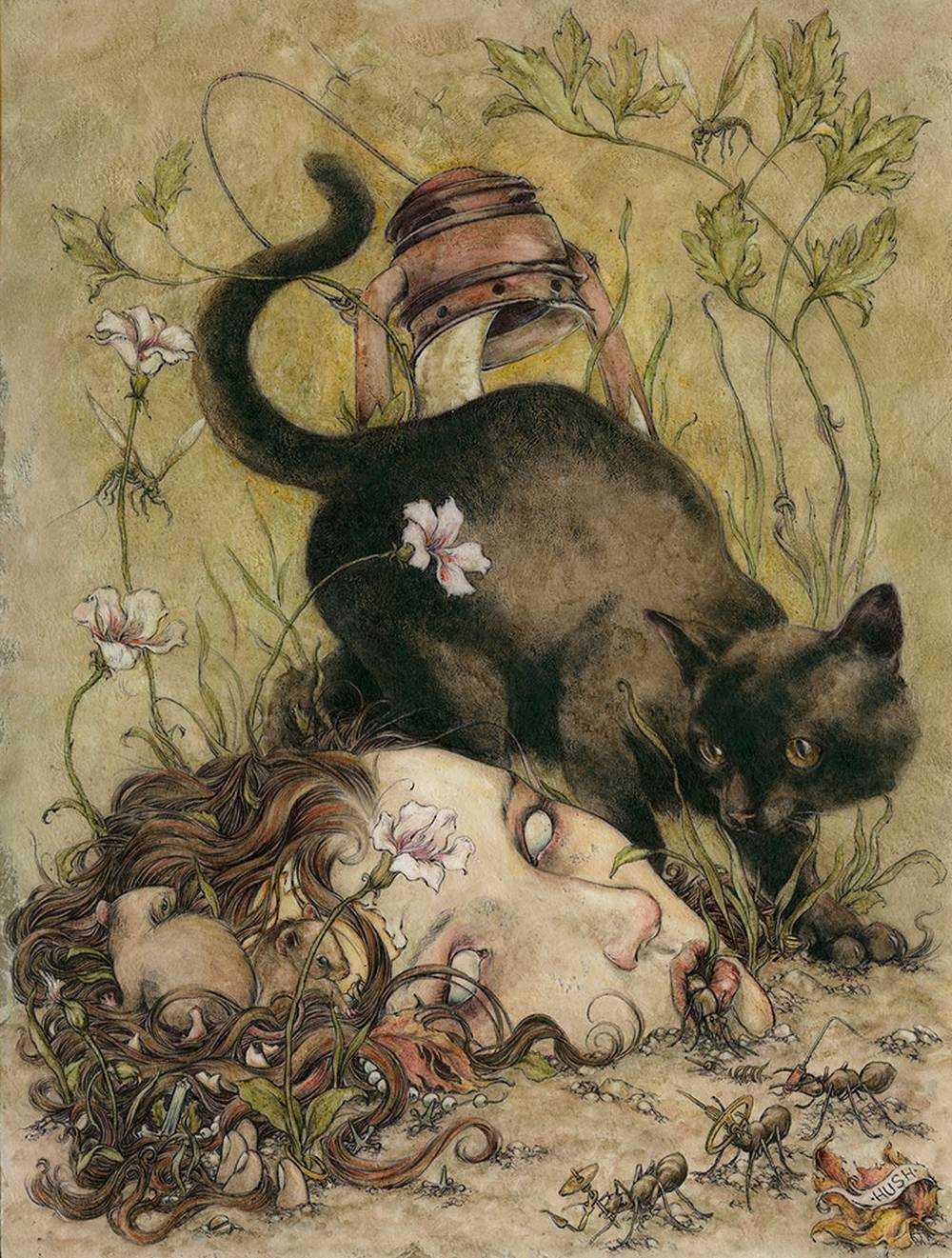 Jeremy hush - Illustrations kiu478