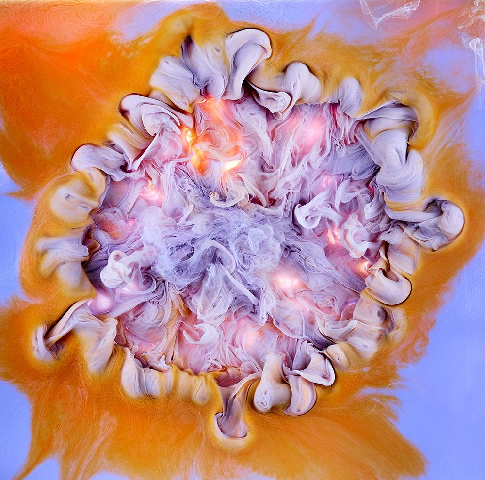 liquid flower series by London photographer, Mark Mawson